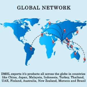 global NETWORK- DMSL
